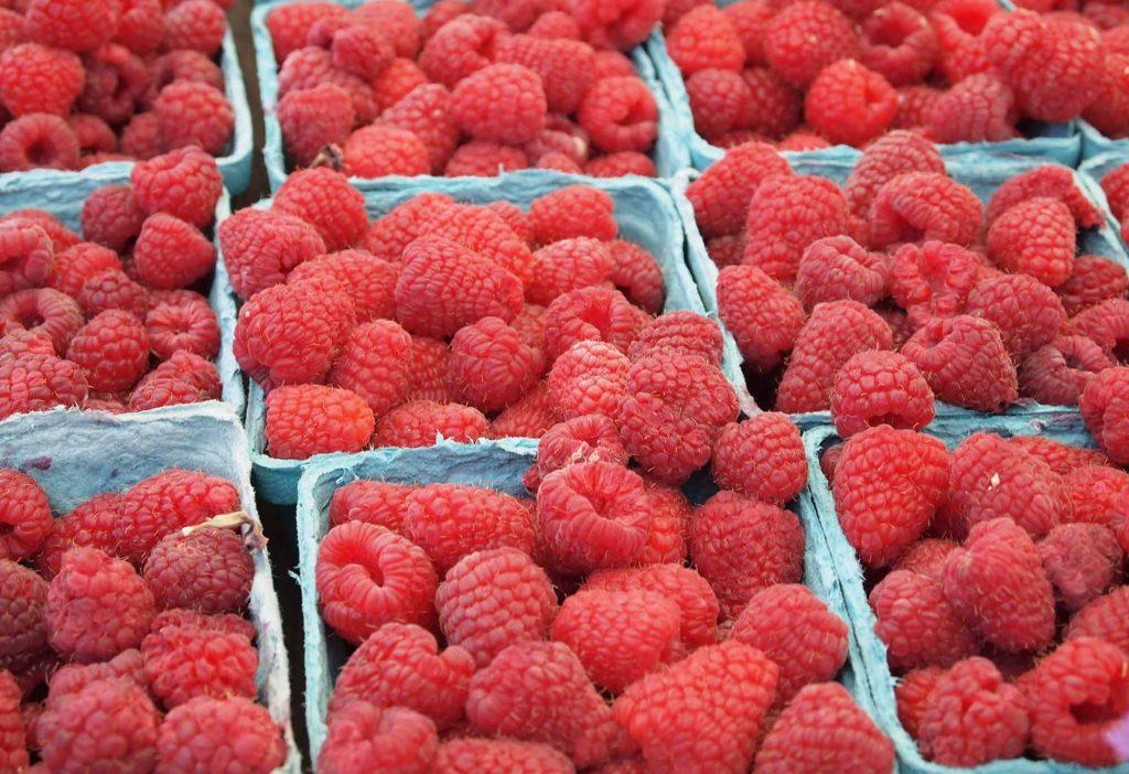 Lista completa dieta autoimuna fructe